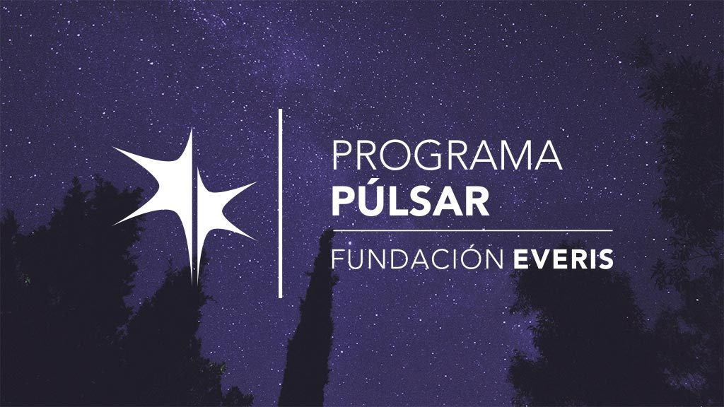 Diseño web. Program Pulsar. Everis